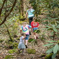 Forest School gives children opportunities for adventure outdoors
