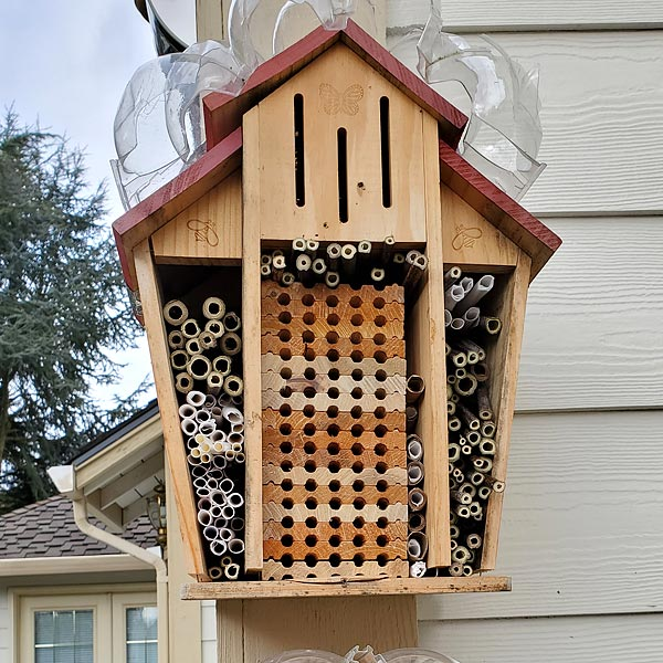 Insect houses can go just about anywhere, even without a garden