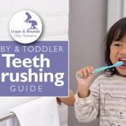 Baby & Toddler Teeth Brushing Guide