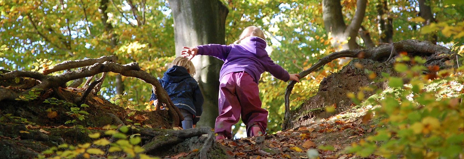 Our nursery is located close to Summerfield Park and Edgbaston Reservoir, where the children can explore and enjoy nature (under adult supervision).