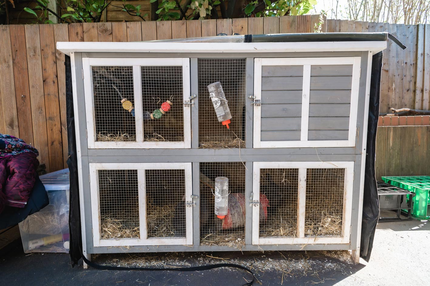 One of our animal enclosures at the nursery. At Leaps & Bounds, children can look after animals like chickens and guinea pigs.