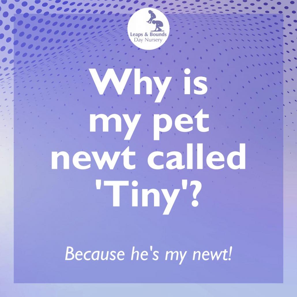 Newt joke for toddlers